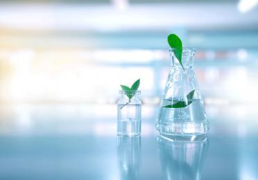 Desempeño ambiental Homepage